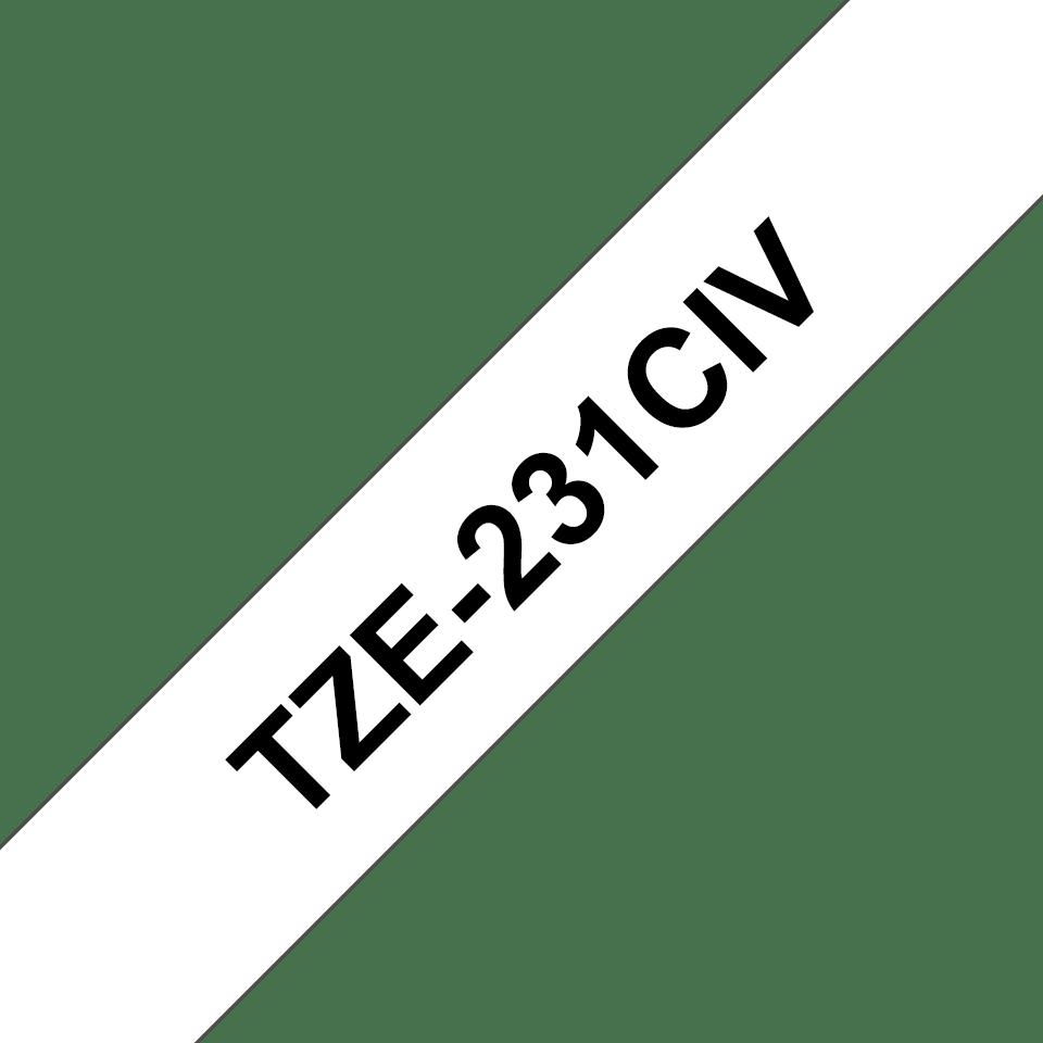 TZe-231CIV 2